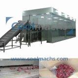 IQF Mangofrucht-industrielle Tiefkühlverfahren-Maschinen-Mangofrucht-Böe-Gefriermaschinen