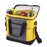 Picknicktote-Beutel-Organisator-Kühlvorrichtung-Beutel (YYCB050)