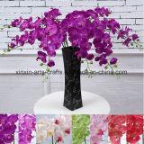 Орхидея Phalaenopsis реального касания 9 головок Silk цветет декоративные искусственние цветки
