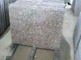 Lastre e mattonelle dentellare rosse del granito del granito G687 della pesca