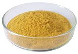 Extrait de thé vert de Matcha d'extrait d'usine de taux