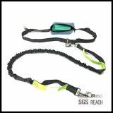 La cintura da a perro de animal doméstico libre el correo corriente con la maneta del entrenamiento