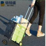 Bon chariot se pliant en plastique de chariot à achats des meilleurs prix avec 2 roues