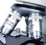Microscópio biológico com cabeça da demonstração
