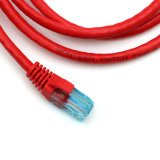 Cat5e Patch Cord, UTP / FTP en 0.5m ~ 100m