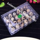 24PCS bandejas plásticas do ovo de codorniz do animal de estimação desobstruído transparente dos furos 100% com etiqueta de papel (bandeja plástica do ovo)