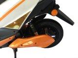 """Motocicletas dos """"trotinette""""s de motor elétrico"""