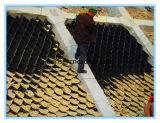 HDPE Geocell in der Straße ist und im Steigung-Oberflächenschutz