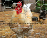 Rete metallica esagonale del pollame di Sailin