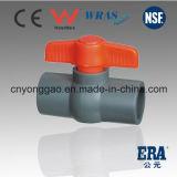 PVC NPT/BSPT/JIS/BS/ANSI/DIN 플라스틱 조밀한 공 벨브