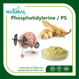 Uittreksel Phosphatidylerine van de Installatie van 100% het Natuurlijke/PS het Uittreksel van de Sojaboon