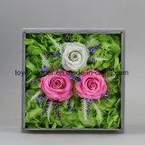 Flor artificial preservada da flor Handmade da flor fresca