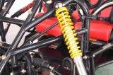Go-kart van de Consumptie van de Brandstof van het Ruime van de Macht van het hoge Volume Go-kart van Kand kd-250gka2 Seater 250cc het Lage