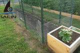 A jarda de Sailin protege a cerca com fio de galinha