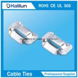 La L digita le clip della fascia dell'acciaio inossidabile per la fascia