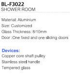工場価格の鋼鉄ハンドル(BL-F3022)が付いているアルミニウムシャワーのドア
