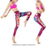 Подгоняйте одежды гимнастики износа пригодности женщин кальсон йоги сексуальные
