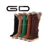 Ботинки шерсти зимы пола фабрики Gdshoe стильные