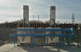 De Warmtewisselaar van de Plaat van het Roestvrij staal van de stoom en van het Gas