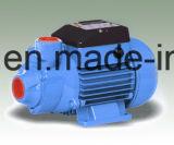 Qb 와동 펌프 물 전기 펌프