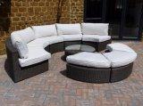 Insieme del sofà del giardino del rattan di Avana