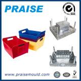 Molde da caixa da injeção da alta qualidade e da precisão/peça plásticos do molde