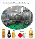 Chaîne de production automatique de jus de pommes de mangue de fruits frais pour la bouteille en verre