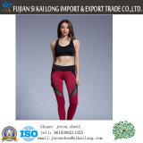 Pantaloni di brivido all'ingrosso di yoga di forma fisica della donna di prezzi di fabbrica