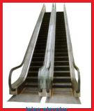 Innenhandelsrolltreppe-Aufzug mit geätzter Edelstahl-Landung-Platte