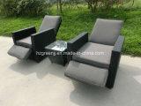 غاز [ركلين شير] 3 قطعة أريكة محدّد [ويكر] حديقة أثاث لازم