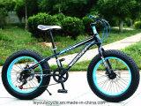 حارّ عمليّة بيع ثلج سمين إطار العجلة درّاجة ([ل--62])