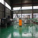 Полная Semi автоматическая минеральная вода без производственной линии газа заполняя