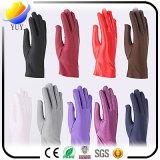 Bunte Baumwolle und Nylon gestrickte Form-Handschuhe