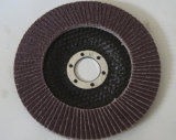 Крышка 100 сети дисков щитка полируя
