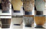 Tegels van de Steen van de Vloer van de Kleur van Dake van Foshan de Natuurlijke Marmeren