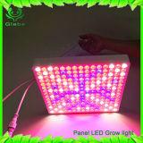 45W LED는 꽃이 만발하 증가해 실내 플랜트 묘종을%s 가벼운 위원회 빨간 파란 점화를 증가한다