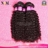 합성 직물 연장이 사람의 모발을 도매하는 Kanekalon 머리는 묶는다 (QB-MVRH-DW)