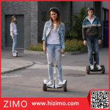 Самокат собственной личности Ninebot балансируя оценивает электрический Chariot