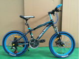 Aktien für 20 Inch MTB Fahrrad-Berg Bicycle Gebirgsfahrrad