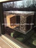 Chambre acrylique claire faite sur commande d'oiseau avec les cuvettes intenses d'aspiration