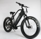 중앙 드라이브 모터를 가진 빠른 500W 산 먼지 자전거