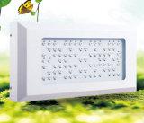 Hydroponic завод 80*3W СИД растет светлое 240W СИД растет свет