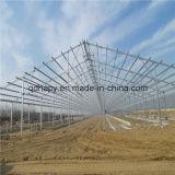 Ferme de porc préfabriquée de structure métallique de coût bas