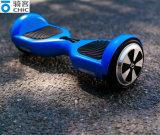 Individu de deux roues équilibrant les scooters intelligents