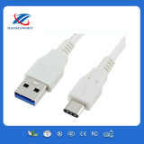 Male 3.1 Type C USB Cable에 남성