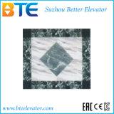 EAC de alta calidad y buen Decoración Ascensor Home con Fabricación Profesional