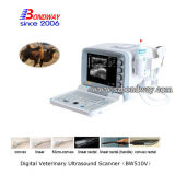 De veterinaire Paarden Veterinaire Medische Apparatuur van de Ultrasone klank