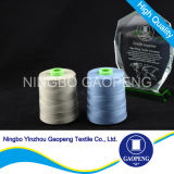 Polyester girado Yarn para Clothing/Garment/Shoes/Bag/Case