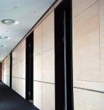 Panneautage en stratifié HPL-Compact décoratif de mur