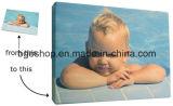 """Toile imperméable à l'eau de peinture à l'huile de tissu de toile (20 """" X24 """" 1.9cm)"""